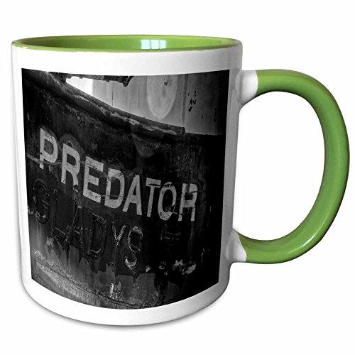 3dRose Roni Chastain Sea Scapes - preditor boat - 11oz Two-Tone Green Mug - Preditor 2