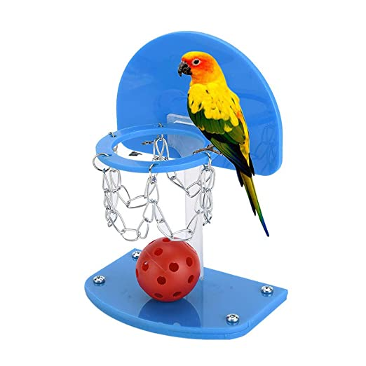 QNMM Pet Bird Toys Entrenamiento De Loros Baloncesto Mini Canasta ...