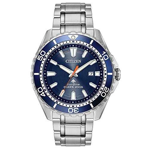 Mens Diving Watch (Citizen Men's 'Eco-Drive' Quartz Stainless Steel Diving Watch, Color:Silver-Toned (Model: BN0191-55L))