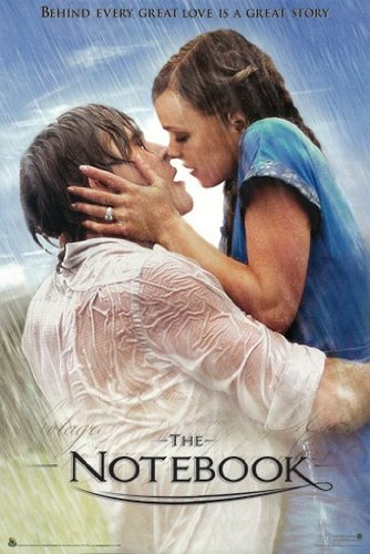 P Cocci THE NOTEBOOK MOVIE POSTER Behind Every Great Love RARE HOT NEW ()