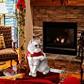 Cat Christmas Costume, Adjustable Pet Cat Santa Clothes Cloak with Bells, Puppy and Cat Xmas Claus Costumes Apparel Party Clothing Cape for Small Dogs and Cats Cosplay (Cat Christmas Costume, Red) by Vikedi