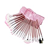 niceEshop Professional Cosmetic Makeup Brush Set With Storage Bag (22pcs ,Pink)