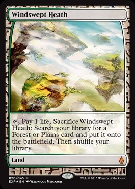 Magic: the Gathering - Windswept Heath (020/045) - Expedition Lands - Foil
