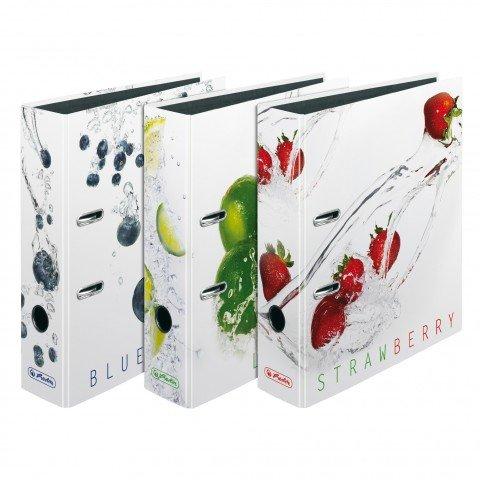 Motivordner diverse Motive zur Auswahl Ordner maX.file A4 Innenspiegel sw Rückenbreite 8 cm (10, Fresh Fruit sortiert) B00LKESPVQ    Neuer Markt