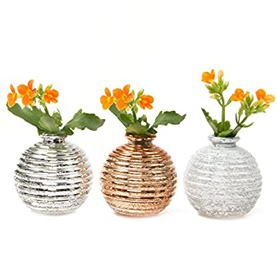 Chive - Smasak, Small Round Glass Flower Vase, Decorative Rustic Floral Vase for Home Decor Living Room Centerpieces and Events, Single Flower Bud Vase -  Bulk Set of 6 (Gold, Silver, White) - RUSTIC DESIGN, VINTAGE ANTIQUE FINISH: Designed by Chive, the Smasak vases are small round glass flower vases and are essential decorations for any wedding, event, or dinner party or for simply creating your indoor flower arrangements. UNIQUE DECORATIONS FOR STYLISH HOME DECOR: Use these table top vases for small short flowers or clippings from your garden. This light weight bud vase makes flower arranging fun and easy. They are the essential single flower vase for mini roses on your table. MULTI PURPOSE FLORAL ARRANGING: This is a perfect flower vase to use for artificial flower arranging and for wedding centerpieces. - vases, kitchen-dining-room-decor, kitchen-dining-room - 51S3PZlmT5L. SS400  -