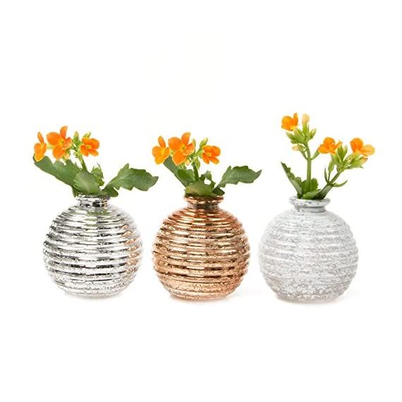"Chive - Set of 6 Smasak 2.5"" Wide 2.75"" Tall Small Round Glass Flower Vase, Decorative Rustic Floral Vase for Home Decor Living Room Centerpieces and Events, Single Flower Bud Vase - Mixed - CHIVE INC was established over 15 years ago and they currently design and make thousands of glass and ceramic flower vases and other fun bits of home décor! In addition to all these vases they make over 200 plant pots of varying sizes, colors, materials, and textures. I am thrilled to offer on my Amazon page just a small selection of their catalog, including this set of contemporary but classic glass bud vases, Smasak. RUSTIC DESIGN, VINTAGE ANTIQUE FINISH: The Smasak vases are small round glass flower vases and are essential decorations for any wedding, event, or dinner party or for simply creating your indoor flower arrangements. UNIQUE DECORATIONS FOR STYLISH HOME DECOR: Use these table top vases for small short flowers or clippings from your garden. This light weight bud vase makes flower arranging fun and easy. They are the essential single flower vase for mini roses on your table. - vases, kitchen-dining-room-decor, kitchen-dining-room - 51S3PZlmT5L. SS570  -"