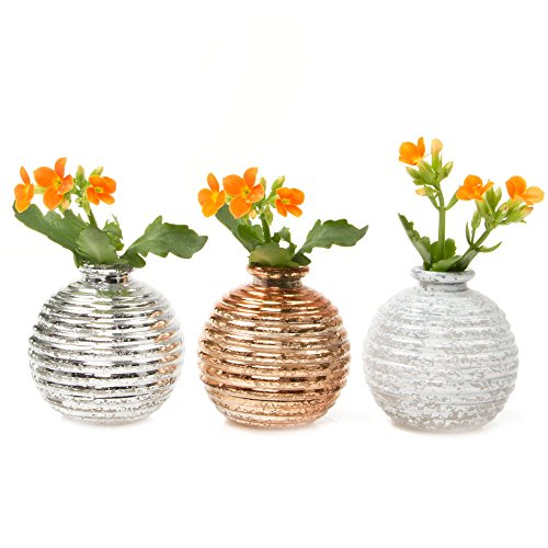 Chive - Small Decorative Round Circular Glass Flower Vase, Wholesale Bulk 6 Piece Set, in Gold, Metallic Silver and White (Metallic Flower)