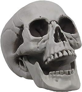 MOKRY PARTY Life Size Skeleton Skull for Halloween Decor Graveyard Outdoor White