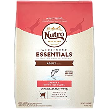 Nutro Wholesome Essentials Adult Dry Cat Food Salmon & Brown Rice Recipe, 14 Lb. Bag