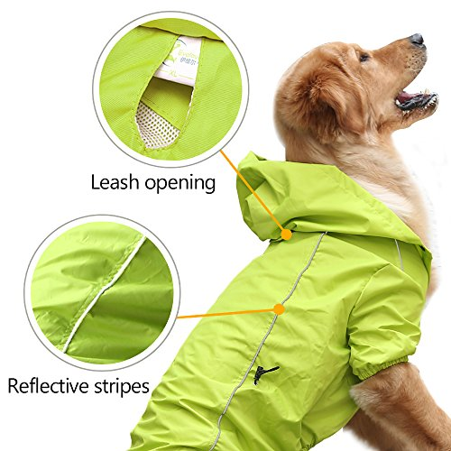 Buy raincoats for dogs