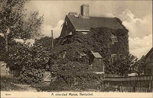 Nantucket Vine - Vine-Clad Manse Nantucket, Massachusetts Original Vintage Postcard