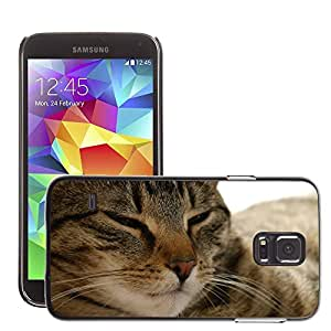Cas Coq Case Cover // M00146376 Cat Pet Adidas Piel Mieze // Samsung Galaxy S5 S V SV i9600 (Not Fits S5 ACTIVE)