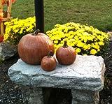 Decorative, Cast Stone Pumpkin, 3 Sizes, Fall & Autumn Decor, Halloween Decoration
