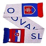 Slovensko Slovakia Soccer Knit Scarf