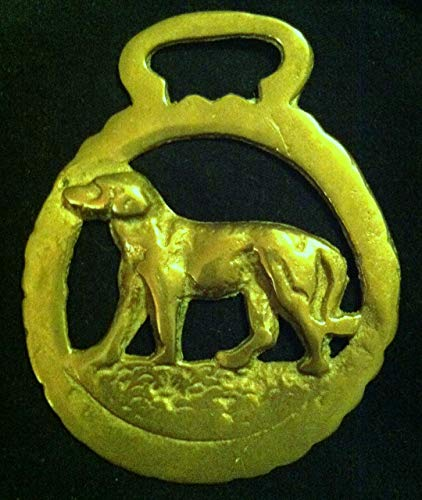 wild dog brass Hunting Dog Horse Harness Brass from England 3 1/8