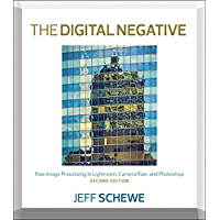 Digital Negative, The: Raw Image Processing in Lightroom, Camera Raw, and Photoshop book cover