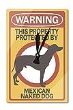 Mexican Naked Dog - Warning (Acrylic Wall Clock)