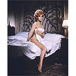 Gina Lollobrigida 8x10 Photo - No Image is Cropped. No white or black borders, What you see is what you get. #GL019