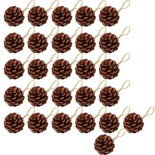 Yarssir 27 Pieces Pine Cones Ornament Natural PineCones with String Pendant Crafts for Gift Tag Tree Party Hanging Decoration(Brown-27 ()
