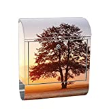 Liwwing XXL Design Wall Mounted Postbox Letter Box Stainless Steel with Newspaper Compartment, Motif and Sunrise Tree Nature Field | No. 0238