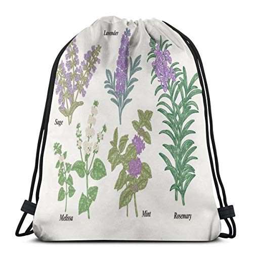 (Unisex Drawstring Bag Gym Bags Storage Backpack,Botanical Infographic With Sage Melissa Lavender Mint And Rosemary Plants)