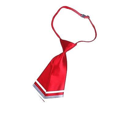 WXHN Corbata Moda Mujer Dama Uniforme profesional Corbata Mujer ...