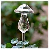 Best Garden Tools 2pcs Small Hand Blown Clear Glass Self Watering Aqua Globes,Mushroom