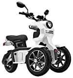 fast electric scooter - Doohan EV3 iTank 2.0 Electric Scooter; BOSCH German Engineering + 3-Wheeled Design - White