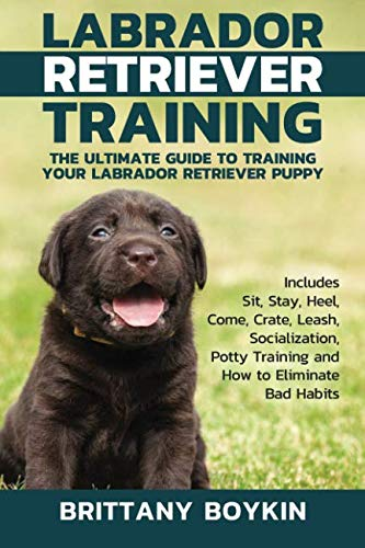 Labrador Retriever Training: The Ultimate Guide to Training Your Labrador Retriever Puppy: Includes Sit, Stay, Heel, Come, Crate, Leash, Socialization, Potty Training and How to Eliminate Bad ()