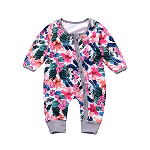 Floral Long Sleeve Onesie (Baby Girls' Footless Onesies Infant Floral Long Sleeve Zipper Romper 0-18 Months (0-6 Months, Multicolor))