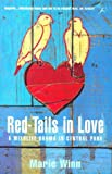 Front cover for the book Red-Tails in Love : A Wildlife Drama in Central Park by Marie Winn
