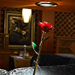 TECHSHARE-24k-Gold-Rose-Long-Stem-Real-Rose-with-Base-Stand-and-Greeting-Card-Best-Gift-for-Valentines-Day-Mothers-Day-Anniversary-Birthday-Gift-Red