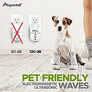 Ultrasonic Pest Repellent 5-in-1 Indoor Pest Control Repeller With Electromagnetic, Ionizer & Auto Light For Mosquitos,Rats, Spiders, Rodents (HR2121)
