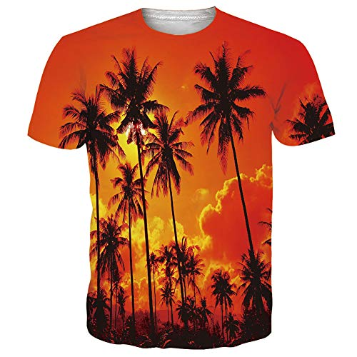 RAISEVERN Unisex Hawaiian T-Shirt 3D Funny Printed Crew-Neck Sunset Coconut Tree Short Sleeve Tropical Beach Summer Tee for Men Women