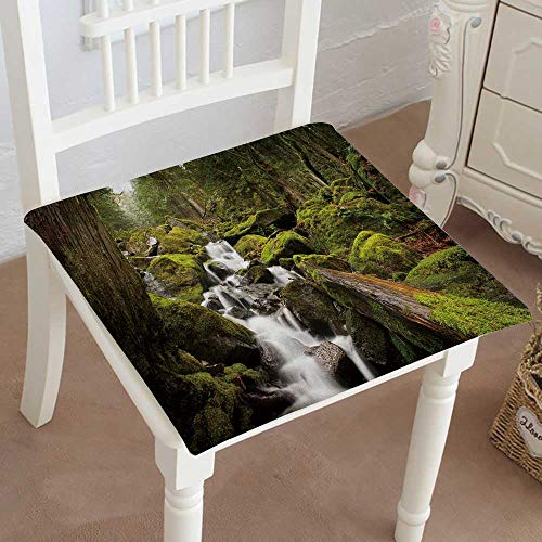 - Mikihome Chair Pads Classic Design a Stream meanders Through a rain Forest with Cedar and fir Trees Cotton Canvas Futon 20