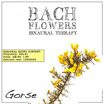 Whole Foods Bach Flowers