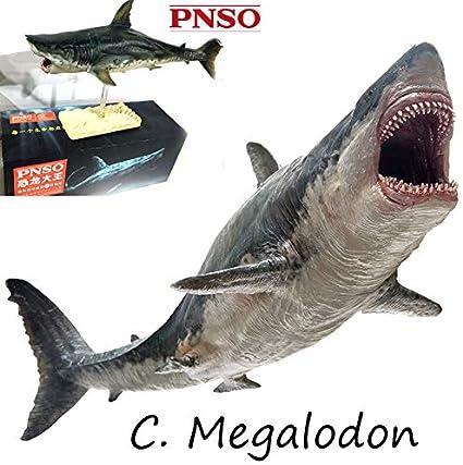 PNSO Megalodon prehistoric sharks Model toy scientific art Dinosaurs Figure gift