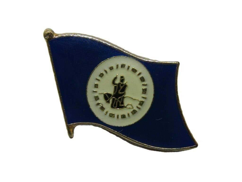 Amazon com : Lapel pin - Lapel pins for Women Men - Flag - Pack of