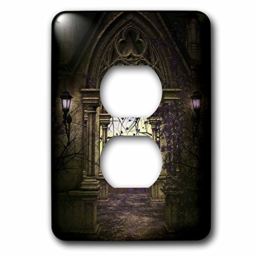 (Anne Marie Baugh - Fantasy - Decorative Stone Arch With A Fantasy Feel - Light Switch Covers - 2 plug outlet cover (lsp_213916_6))