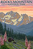 Rocky Mountain National Park, Colorado – Bear Family and Spring Flowers (9×12 Art Print, Wall Decor Travel Poster) Picture