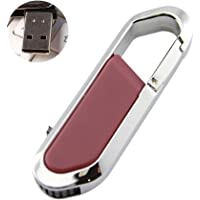 leegoal USB Flash Drive, USB 2.0 Metal Memory Stick with Keychain for iPhone, iPad, iPod, Mac, Android and Computer (128G, red)