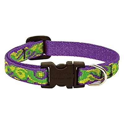 Lupine 1/2-Inch Big Easy Adjustable Dog Collar