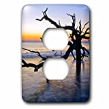 3dRose Danita Delimont - Oceans - USA, Georgia. Jekyll Island, tree, ocean - Light Switch Covers - 2 plug outlet cover (lsp_278900_6)