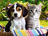 ZHENC 5D Diy Full Square Diamond Painting Drawing Crafts Beagle Dog and Cat Embroidery Needlework Full Drill Decor Cross Stitch Kits