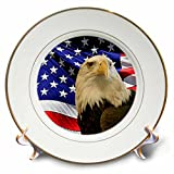 3dRose LLC Bald Eagle and American Flag 8-Inch Porcelain Plate