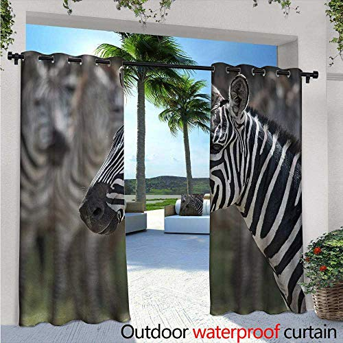(BlountDecor African Indoor/Outdoor Single Panel Print Window Curtain W84 x L108 Zebra in Serengati National Park Safari Animal in Desert Picture Silver Grommet Top Drape Black White Reseda)