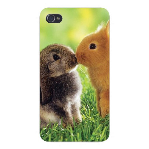 Apple Iphone Custom Case 4 4s White Plastic Snap on - Cute Baby Bunny Rabbits Kissing Smooching