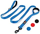 Primal Pet Gear Dog Leash 8ft Long - Blue - Traffic Padded Two