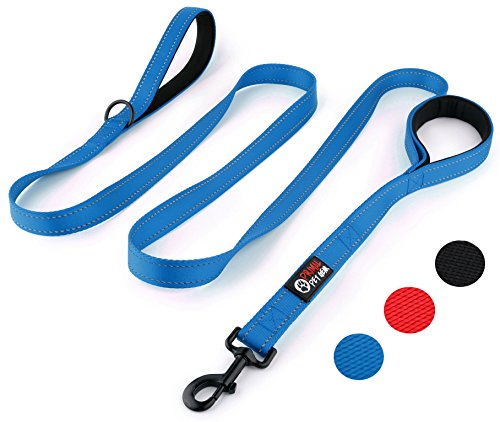 Primal Pet Gear Dog Leash 8ft Long - Blue - Traffic Padded Two Handle - Heavy Duty - Double Handles Lead for Control Safety Training - Leashes for Large Dogs or Medium Dogs - Dual Handles Leads by Primal Pet Gear
