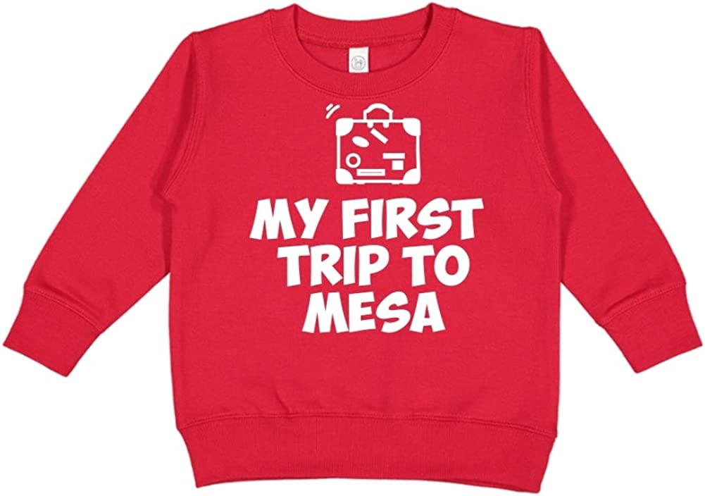 Toddler//Kids Sweatshirt My First Trip to Mesa